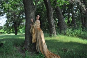 Gold Dress 037 by elusiveelegance