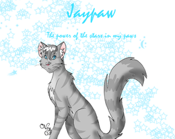 Jaypaw-The Power of the Stars by Moonflight-RiverClan