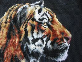 Tiger Chilling Out WIP 1 Close-up of Face by fuzzybuttbunny