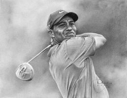 Tiger Woods by Drawing-Dude-Dave