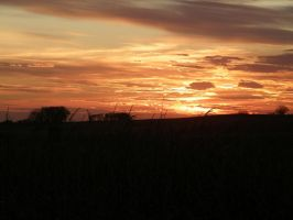 A Prairie Sunset by geiersphotos