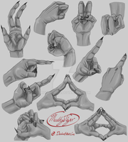 Elite Hand Study by MuddyTiger