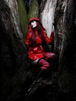 roten.wald III by silent-order