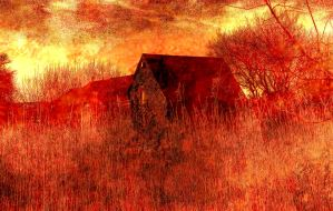 house in the reeds by awjay