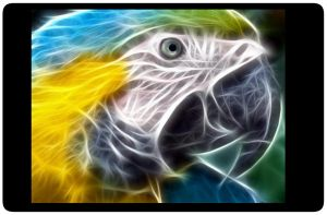 Abstract Parrot- Laptop Skin by SpyroGirl22