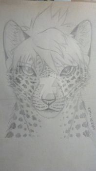 Kimi - Completed Sketch by KimiFur
