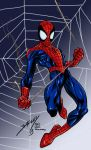 Ultimate Spider-man by AKADoom