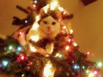 Living Ornament by WoodenOx