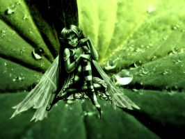 Fairy on a leaf by adipotter