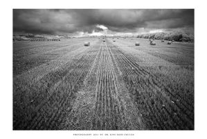 Straw bale study - I by DimensionSeven