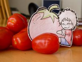 Spain and the tomato by CaroShadow