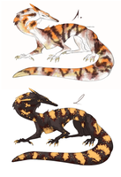 Purr gecko subspecies - CLOSED!! by NiseSk