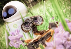 Wall-e and Eve - Picking Flowers by lipeteixeira