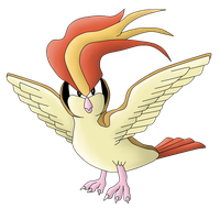 Gift Request 5: Pidgeot by The-3Dan