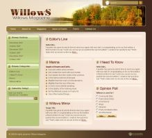 Blog for Willows Magazine by artistsanju