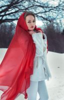 red riding hood II by Nocturny
