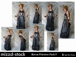 Raven Priestess Pack 5 by mizzd-stock