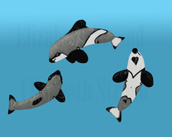 Stroude's Dolphins by Prince-Petrichor