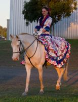 STOCK - 2014 Andalusian Nationals-268 by fillyrox