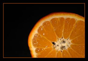 orange by Platonov