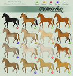 Moscovian coat chart: Champagne, Pearl and others by BH-Stables