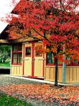Autumn House by looking4myleopard