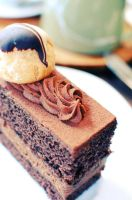 Chocolate Gateau by MajDesign