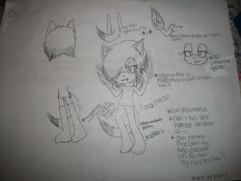 Fiora the Cat ref by ChickenNuggetGalaxy