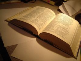 Objects: Open Book by trizany-stock