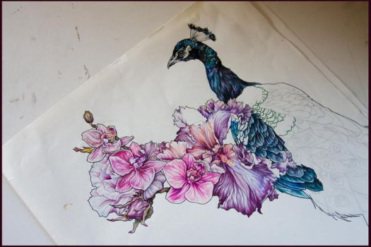 Peacock and Flowers WIP by JenniferWeiler