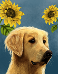 Golden Retriever commission by JayRoseberry