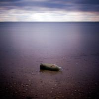 Message in the bottle ... by julie-rc
