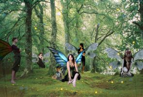 Midsummer Nights Dream Fairies by elita141