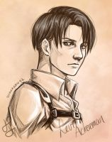 Anime Portrait: Levi Ackerman by Shuukaku92