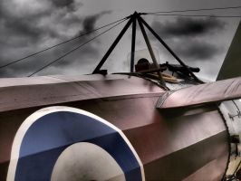 Bristol M.1C close up - Old Warden by davepphotographer
