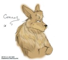 Seriously Conner by Autumn-Memories