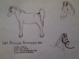 FDS Princess Primrose (#34) by White--Swallow