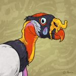 King Vulture by Monster-Man-08