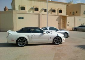 Mustang GT revealed  Rate by HZON