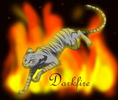 Darkfire by Torrentpelt