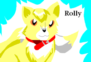 Rolly The Kittypet by Shadowpaw909
