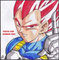 VEGETA GOD / NUMBER ONE! by TriiGuN