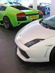 Gallardo LP560-4 by ToiletSex