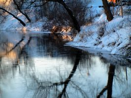 Winter reflections. by sweatangel