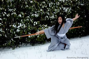 Snow Warrior 03 by flyingwind66