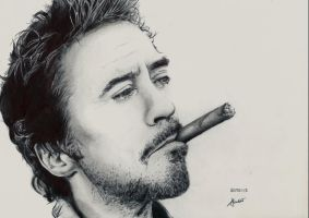 Robert Downey Jr. (Ballpoint Pen) by AzibHamidi