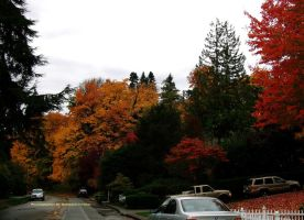 Autumn in Seattle 027. by GermanCityGirl