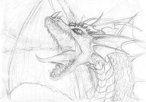 Dragon Head Sketch by TeraMaster