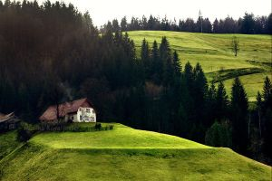 Green fields of Slovenia by demony