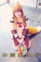 Cosplay Horo 34 by SaFHina